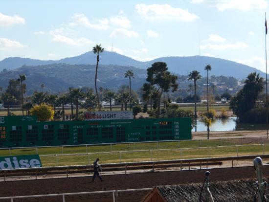arizona races course