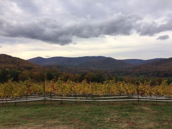 Dyke, Virginie : Views