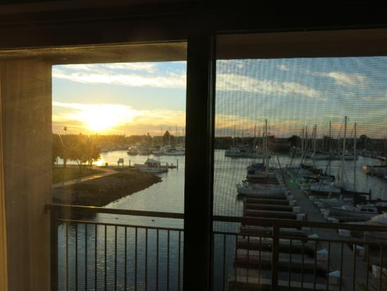 Hampton Inn Channel Islands Harbor: View from Room
