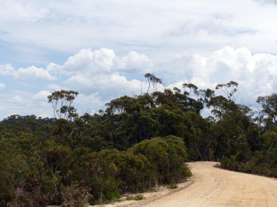 Blackheath, Австралия: Unsealed Hat Hill Rd