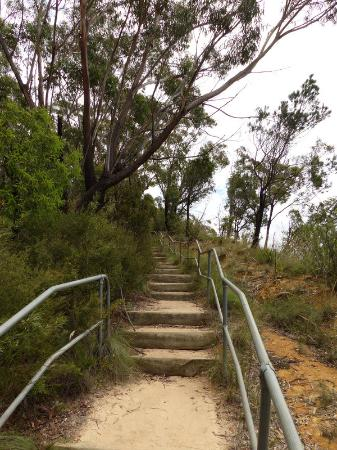 Blackheath, Αυστραλία: Stairway from Docker's Lookout back to Perry's lookdown