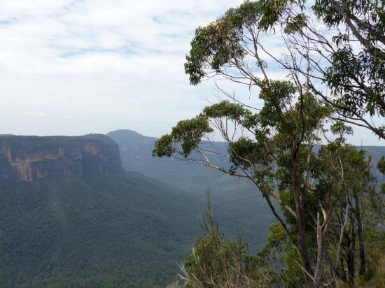 Blackheath, Αυστραλία: View of Grose Valley from Docker's Lookout
