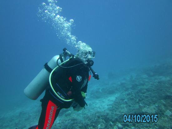 Lomaiviti, Fiji: unter Wasser