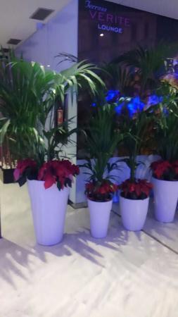 Hotel Paseo del Arte: ロビーにあったきれいな花