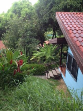 Albergue Alma de Hatillo: Looking down at one of the cabinas