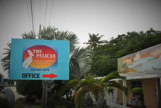 The Pelican: SIGN