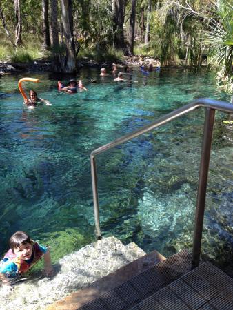 Mataranka, Australia: Short walk/drive to Thermal Pools
