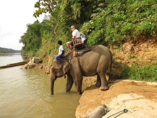 Ban Xieng Lom, Laos: Elephant with riders entering river