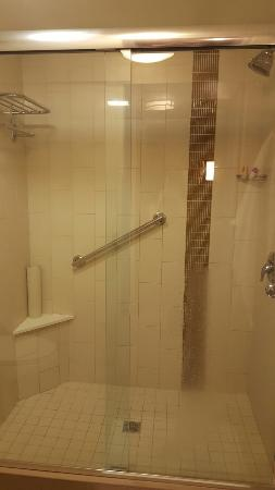 Hyatt Place LAX El Segundo: Bathroom with separate sink and shower area
