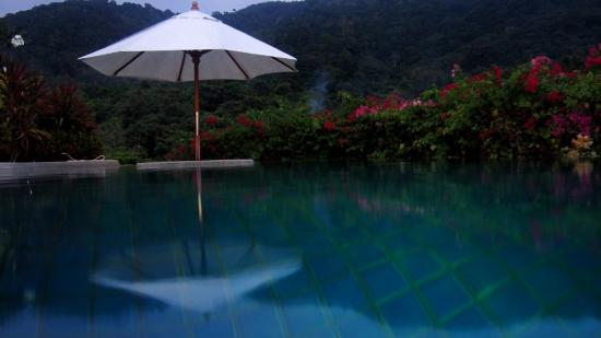 Pacific Club Resort: Amazing Rooftop Pool