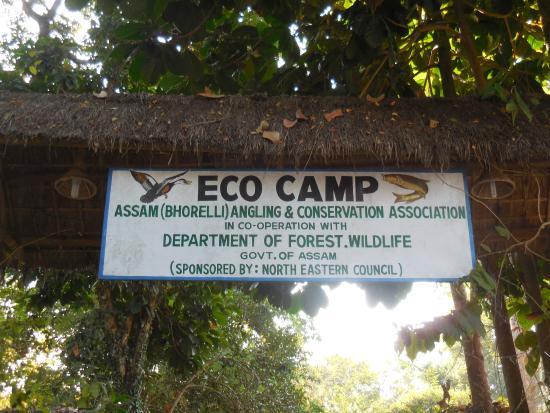 Nameri Eco Camp: signage