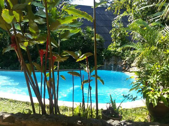 der wunderschöne garten mit pool - picture of little eden, Best garten ideen