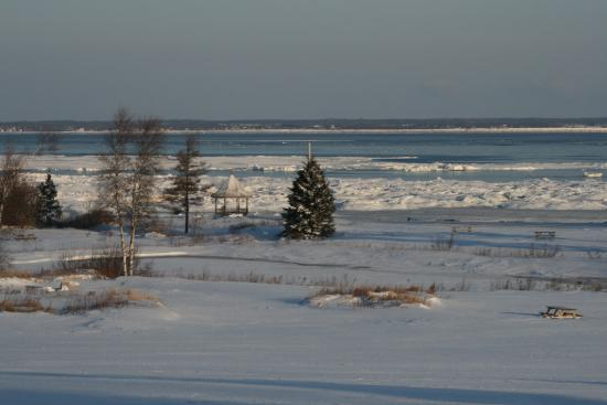 Lorneville, Canadá: The Winter View