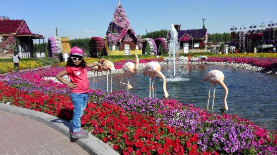 eshal rishad siljha dubai miracle garden - Miracle Garden Dubai