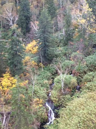 Asahidake Natural Hiking Route: ロープウェイからの眺め