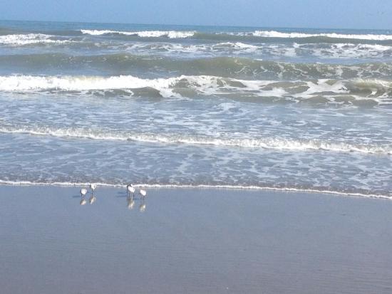 Cocoa Beach Waves
