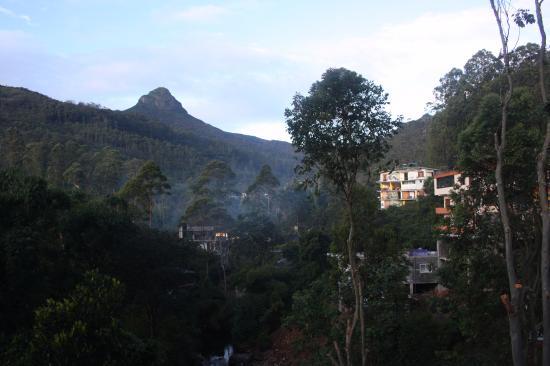 Wathsala Inn : View from restaurant