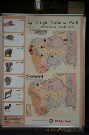 Pretoriuskop Restcamp : wildlife viewing chart
