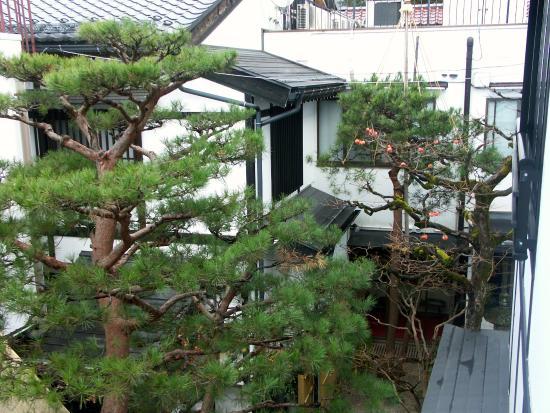 Oyado Yamakyu: View from room