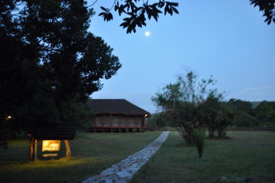 Royal Mara Safari Lodge: Our tent...