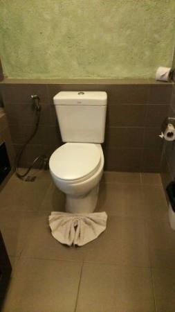 Weekender Resort & Hotel: トイレ