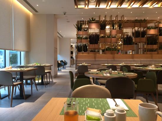 Room 429 King Picture Of Hilton Garden Inn Dubai Mall Of The Emirates Dubai Tripadvisor