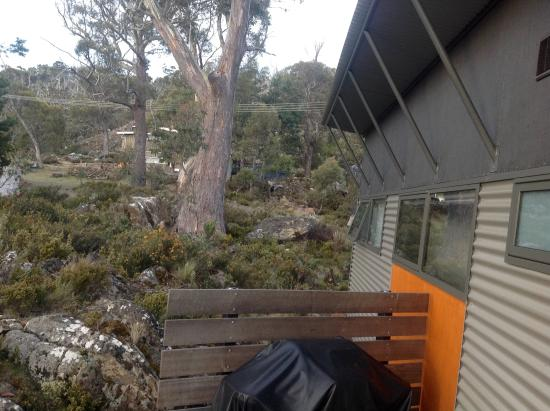 Miena, Αυστραλία: Walibi