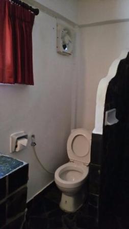Papillon Resort: トイレ