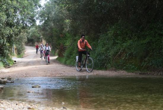 Abilio Bikes