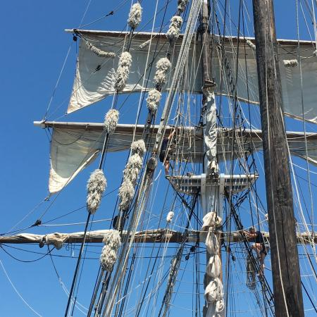 Sydney Harbour Tall Ships: Riggers doing their work