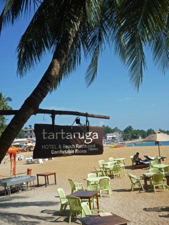 Tartaruga Hotel & Beach Restaurant: The beach