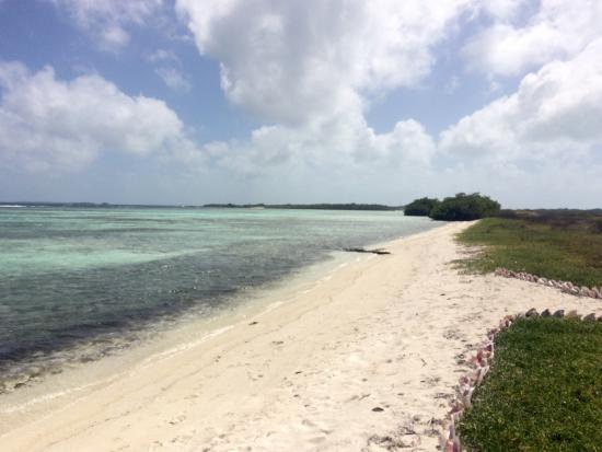 Isla de Carenero - Los Roques: Bellissima Carenero