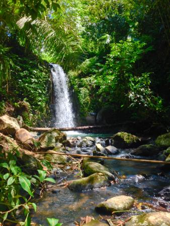 Bali Eco Stay Rice Water Bungalows: second waterfall on property