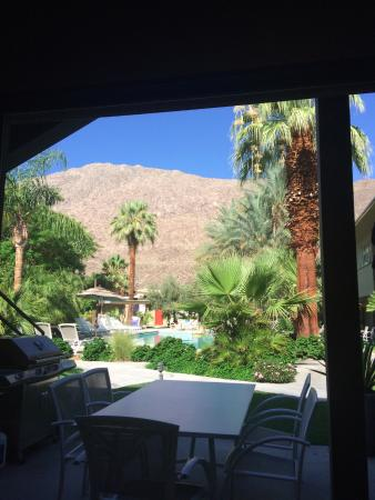 The Chase Hotel of Palm Springs: Vue piscine