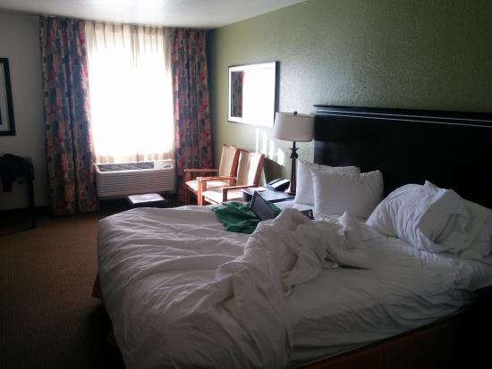 Quality Inn & Suites Denver International Airport: bed