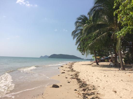 Phangan Villa Beach Bungalow : photo2.jpg