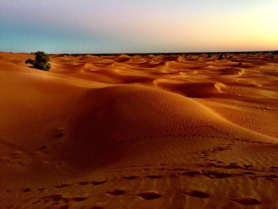 Zamzam Riad: The Sahara dunes