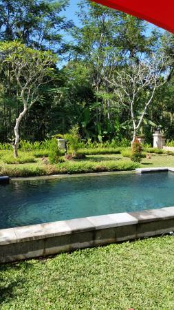 Suara Air Luxury Villa Ubud: Private pool