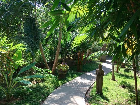 Prana Rainforest Retreat: Pathway to villa