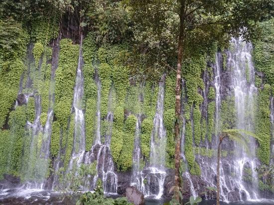 Mindanao, Filippine: DSC_0104_large.jpg