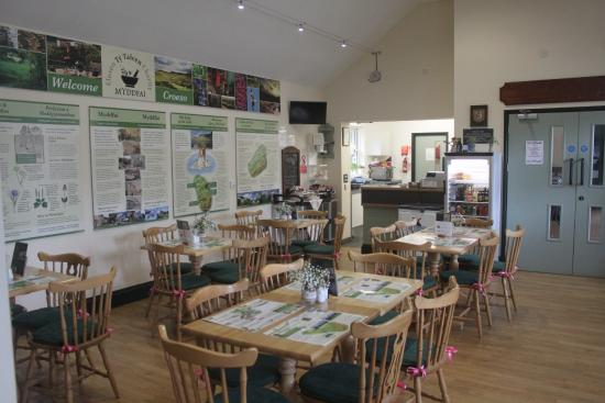 Llandovery, UK: Cafe story boards about Physicians of Myddfai