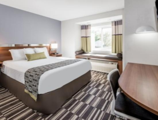 Microtel Inn & Suites by Wyndham Victor/Rochester: Single Queen Bed Room