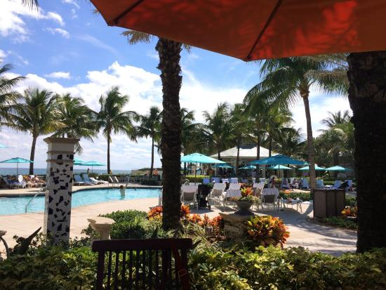 Piscine picture of four seasons resort palm beach palm for Bailly romainvilliers piscine