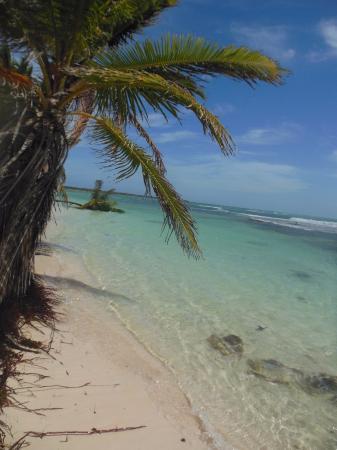 Bayahibe, Republik Dominika: Rincones de la isla