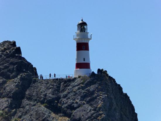 Wairarapa, Nueva Zelanda: Worth the climb