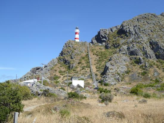 Wairarapa, Nueva Zelanda: A short climb it is