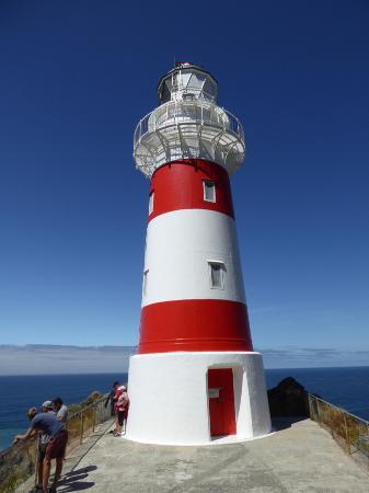 Wairarapa, Nueva Zelanda: At the top