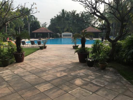 Sedona Hotel Mandalay : The pool