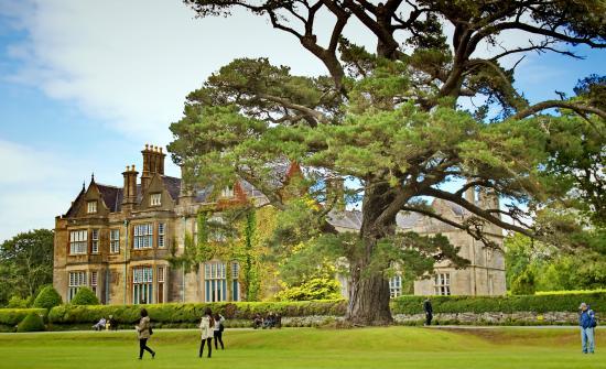 BEST WESTERN Eviston House Hotel: The beauty of Killarney 1