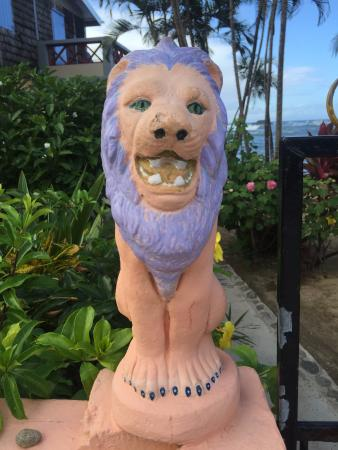 Veranda View Guest House: Mr. Lion at the gate of Veranda View